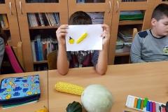 Jesen - razredna nastava